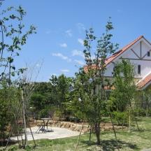 磐田市 T様邸 芝生と雑木林とテラス